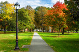 Empty Path Lined with Old Fashioned Street Lights and Colourful Autumn Trees in a Public Park on a Sunny Day - 201127328