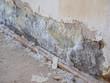Leinwandbild Motiv Salpeter Wand nach Hochwasser