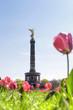 Berlin Siegessäule im Frühling