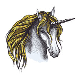 Unicorn horse sketch of animal head with horn