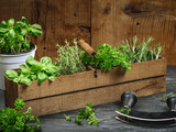 Herbs in old wood box - 201214909
