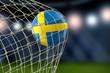 Swedish soccerball in net