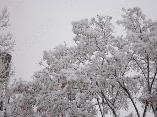 Foto Murales Ávila nevada