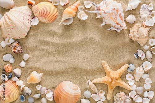 Seashells i otoczaków tło, naturalni seashore kamienie