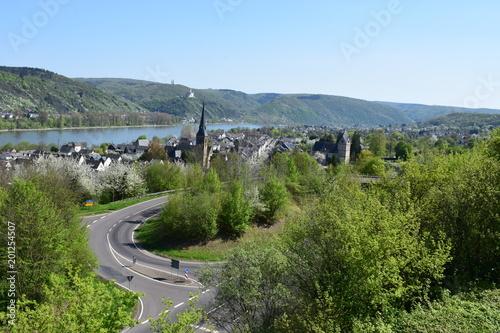 Blick über Rhens am Rhein, inkl. Marksburg