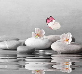 flower and stone zen spa on water surface and grey background © Belight