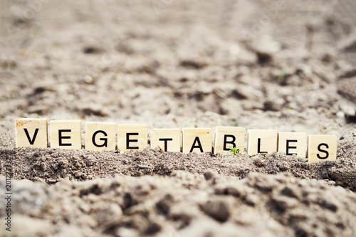 Foto Murales Word vegetables from wooden letters on the earth field prepared for crops. Agriculture.