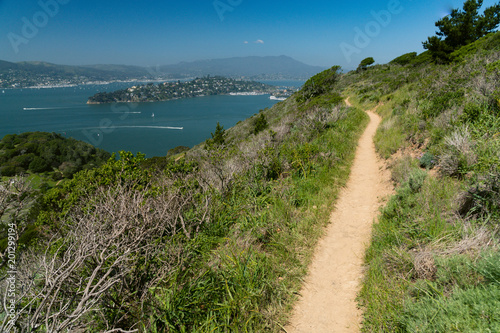 Wide sweeping view of Tiburon, the Marin Headlands and surrounding bay seen from up high on Angel Island - 201299194