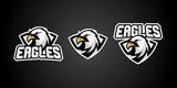 eagle sport gaming logo vector badges emblem