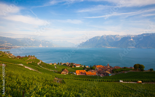 Foto Murales Vineyards of the Lavaux region,Switzerland
