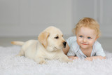 Little girl with labrador puppy - 201377132