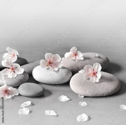 Fototapeta flower and stone zen spa on grey background