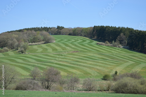 wzorzyste pola w Eifel