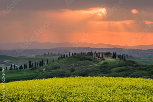 Fotobehang Toscane Tuscan spring landscape at sunset