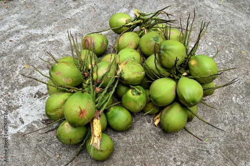 Foto Murales Bunch of coconut,Tropical fruit with green peel,Thailand