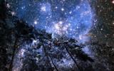 Fototapeta Space - #510111725 © Butch