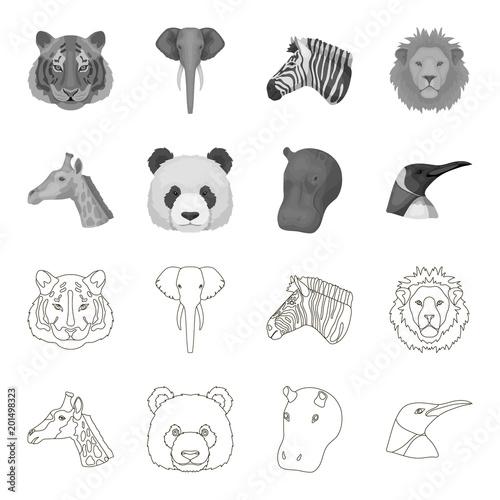 Panda, żyrafa, hipopotam, pingwin, Realistyczni zwierzęta ustawiać inkasowe ikony w konturze, monochromu stylu symbolu zapasu ilustraci wektorowa sieć.