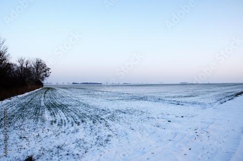 Foto Murales Zimowy krajobraz