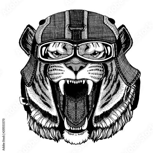 Tygrys, dziki kot Hipster zwierzę sobie kask motocykl. Obraz do dziecięcej odzieży dziecięcej, dzieci. T-shirt, tatuaż, emblemat, odznaka, logo, łatka