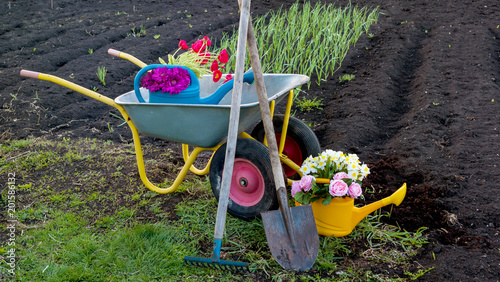 Foto Murales Working tools in the garden on a spring day