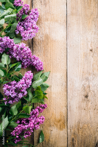 lilac branches on a wooden background, blooming lilacs, old boards, postcard, spring