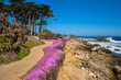 California purple