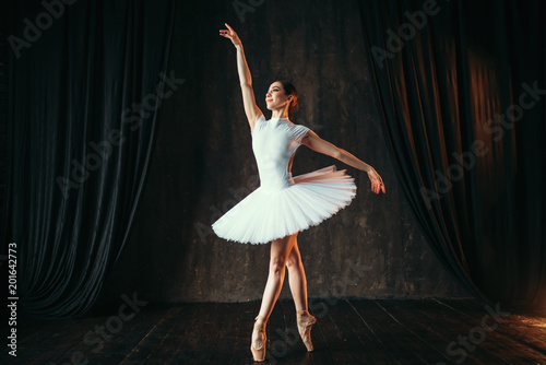 Graceful ballerina dancing in ballet class © Nomad_Soul