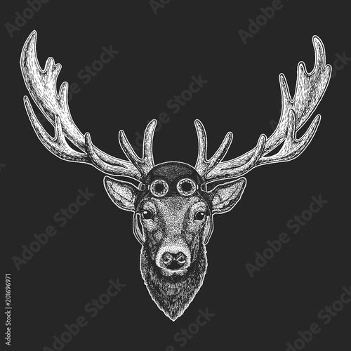 Fototapeta Deer Hand drawn illustration for tattoo, emblem, badge, logo, patch, t-shirt Cool animal wearing aviator, motorcycle, biker helmet.