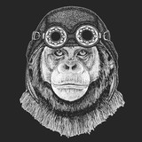Chimpanzee Monkey Hand drawn illustration for tattoo, emblem, badge, logo, patch, t-shirt Cool animal wearing aviator, motorcycle, biker helmet.
