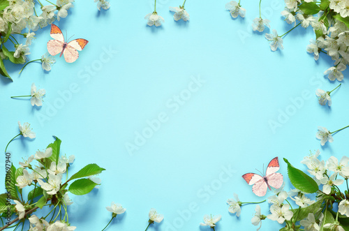 Fototapeta Cherry blossom in wild and butterfly.