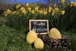 Quadro gelbe Ostereier und Blumen mit Osternest zu Ostern