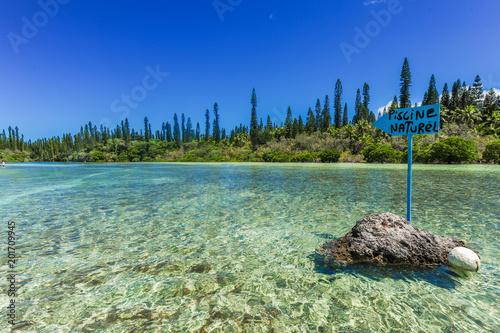 Aluminium Tropical strand Piscine Naturelle D'Oro, Isle of Pines, New Caledonia