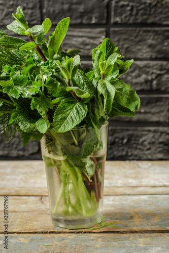 healthy food - fresh and juicy vegetables. raw product. copy space (food herbs green)