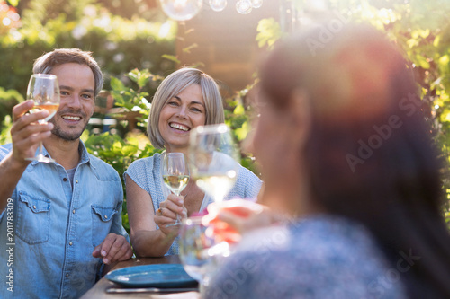 summer. Group of friends gathered around a table in the garden