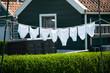 canvas print picture - Weisse Unterhosen auf Wässcheleine