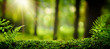 Leinwandbild Motiv Closeup on moss in forest