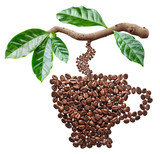 Roasted coffee beans in the shape of coffee cup hanging from coffee branch. - 201813727