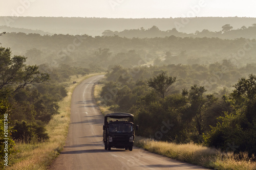 Morning safari drive in Kruger National park, South Africa