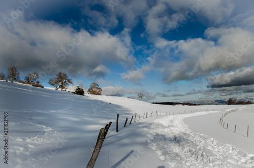 Foto Murales Le Salève, Haute-Savoie sous la neige