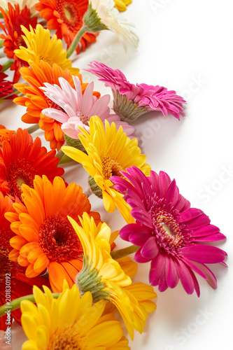 Aluminium Gerbera Gerbera flowers isolated on white background