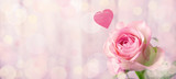 Romantic rose flower background with heart