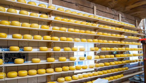 Foto Murales Dutch cheese in a cheese-making