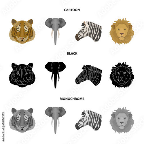 Tiger, lion, elephant, zebra, Realistic animals set collection icons in cartoon,black,monochrome style vector symbol stock illustration web. - 201861395