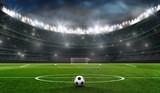 fußballfeld mit fussballtor - 201865326