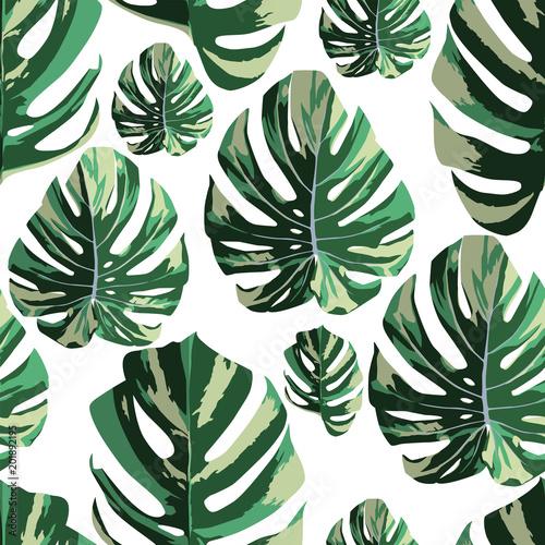 tropikalny-monstera-pozostawia-bez-szwu-desen-bialy-ba