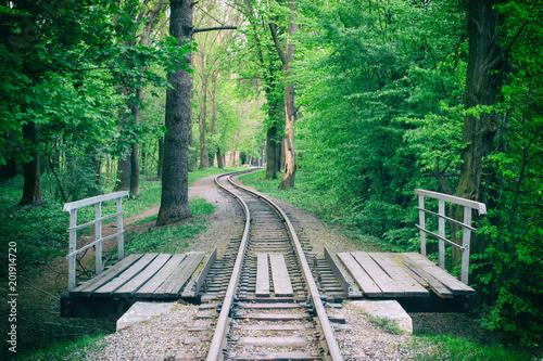 Railroad bridge in the summer © pavlofox