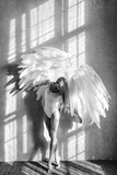 angel woman posing in studio - 201918723