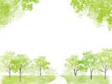 新緑 道 - 201983716