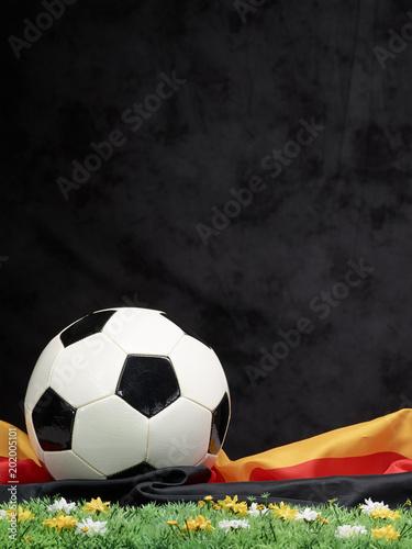Leinwanddruck Bild Fußball
