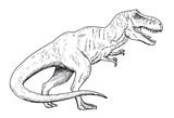 Drawing of dinosaur - hand sketch of tyrannosaurus, black and white illustration